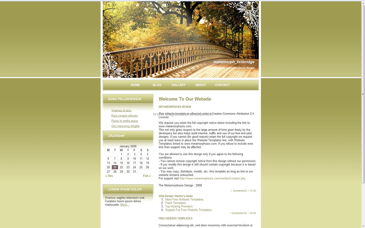 Metamorph Fallbridge css template